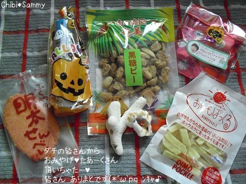 2012_10_26_ICHIGATA_Syuukakusai01_mob.jpg