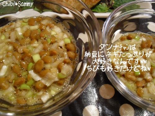 2013_1_27_mornin014.jpg