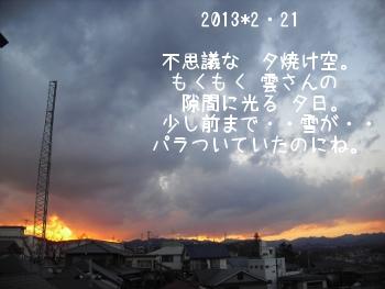 2013_2_21.jpg
