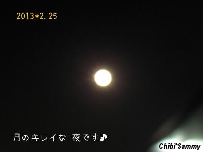 2013_2_25_moonlight.jpg