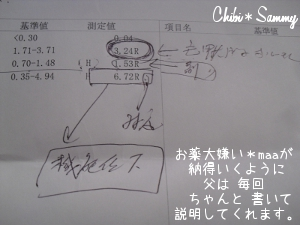 2013_3_8_From_chichi01.jpg