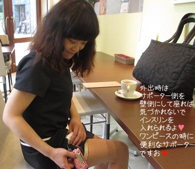 csii_sapo01.jpg