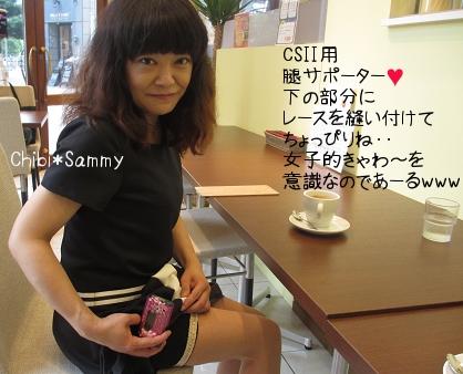 csii_sapo02.jpg