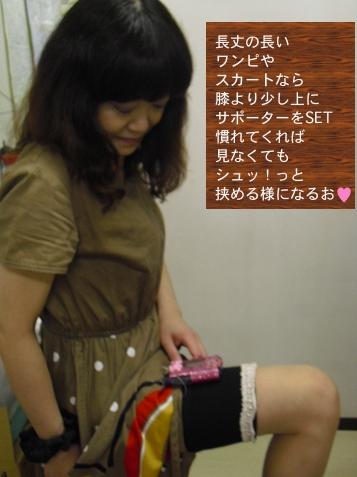 csii_sapo03.jpg