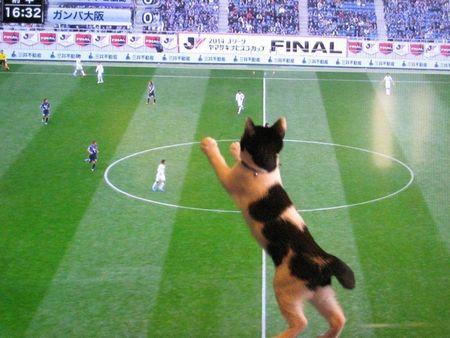 サッカー観戦(笑)