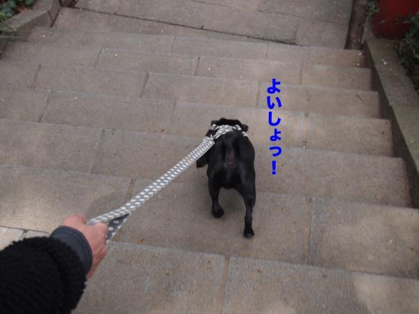 P4165734ブログ_convert_20120503084301