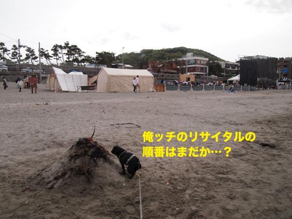 P4306205ブログ_convert_20120528230727