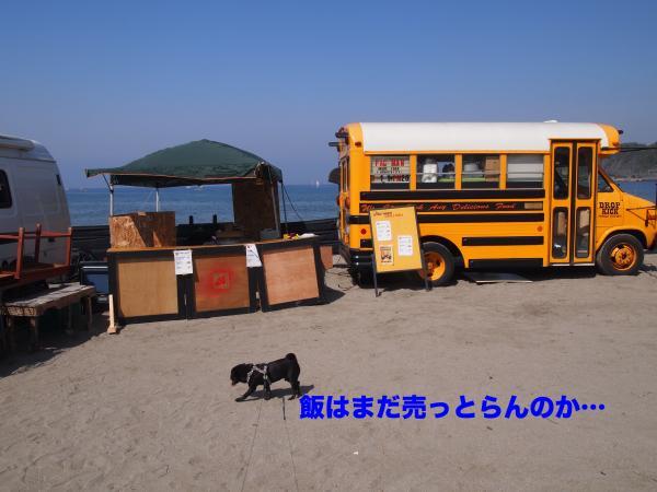 P4296036ブログ_convert_20120528230646