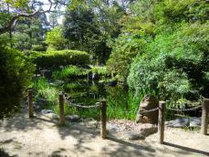 5-6浅野公園