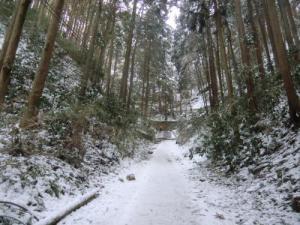 千早城登山道2