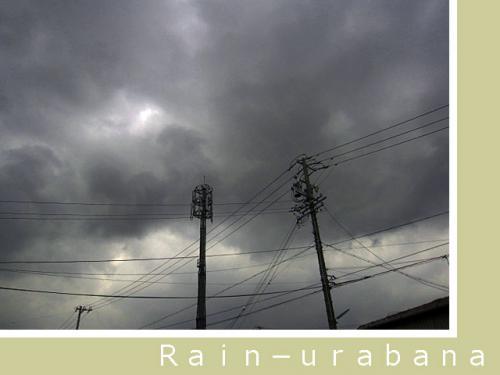 嫌な雲が広がって来ました (~~lll