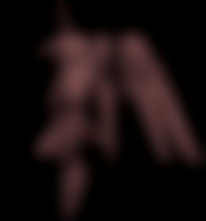 an02_3.jpg