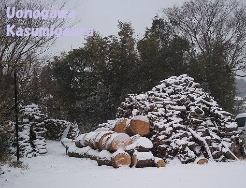 2014-02-08雪