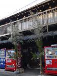 江戸の門松2013