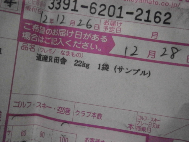 PC280110.jpg