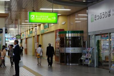 201205hiroshimaeki-7.jpg