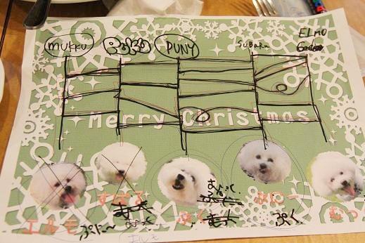 ワクワクの犬連れクリスマス会 (6)