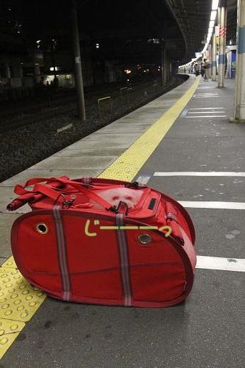 電車乗ったりバイク乗ったり (1)