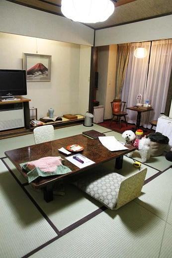 2度目のきぬ川国際ホテルへ (7)