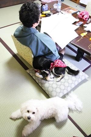 2度目のきぬ川国際ホテルへ 翌朝編 (7)