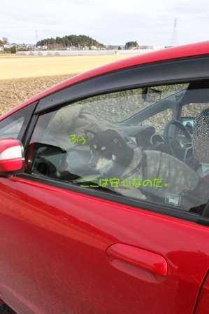 SLの本運転を見に行ってきた。 (7)
