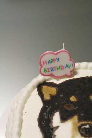 ワンコの似顔絵(!)誕生日ケーキを作ってみた。 (4)