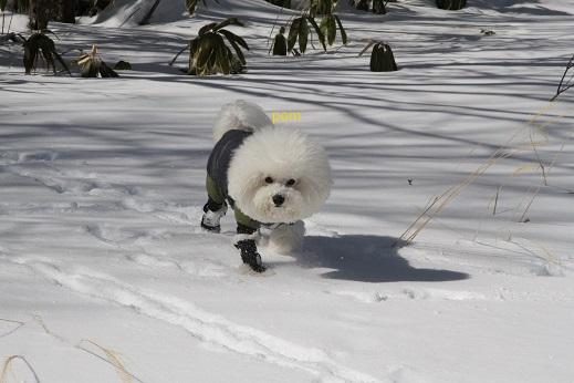 雪遊び@草津 (3)
