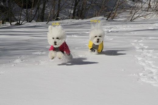 雪遊び@草津 (9)