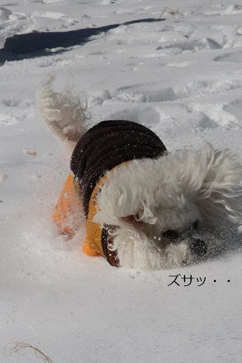 一歩一歩・・・(雪遊び) (1)