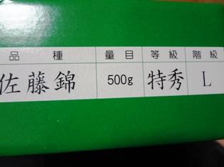 DSC02430.jpg