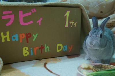 ラビィ誕生日5