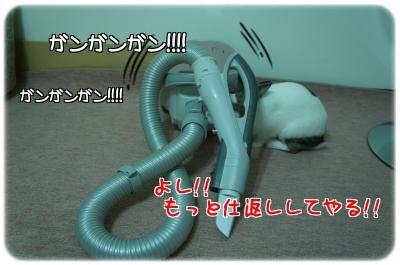 うさうさvs掃除機4