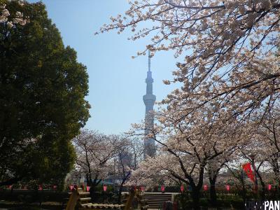 東京スカイツリー5
