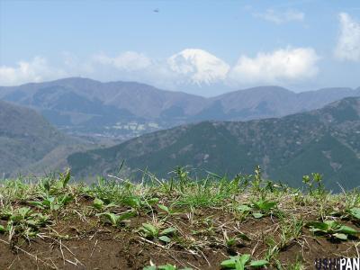 明神ヶ岳05