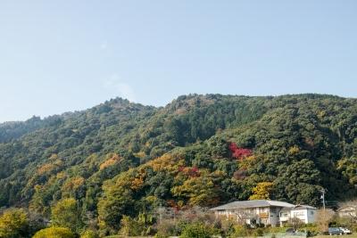 20141123-錦帯橋紅葉谷公園DP2Merrill01