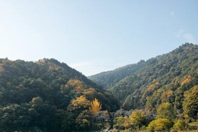 20141123-錦帯橋紅葉谷公園DP2Merrill02