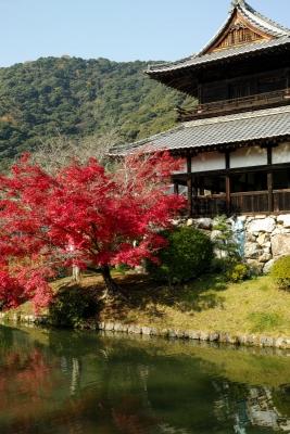 20141123-錦帯橋紅葉谷公園DP2Merrill05