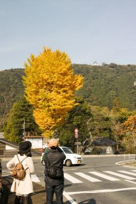 20141123-錦帯橋紅葉谷公園DP2Merrill03