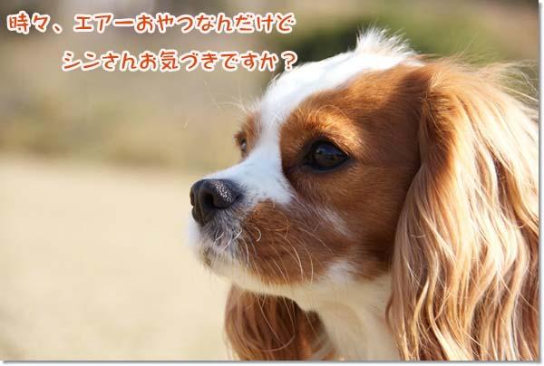 20121212_058.jpg