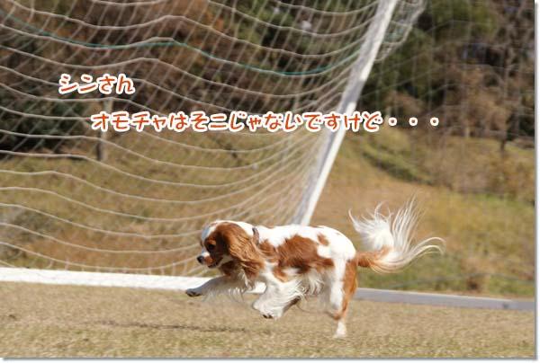 20121212_076.jpg