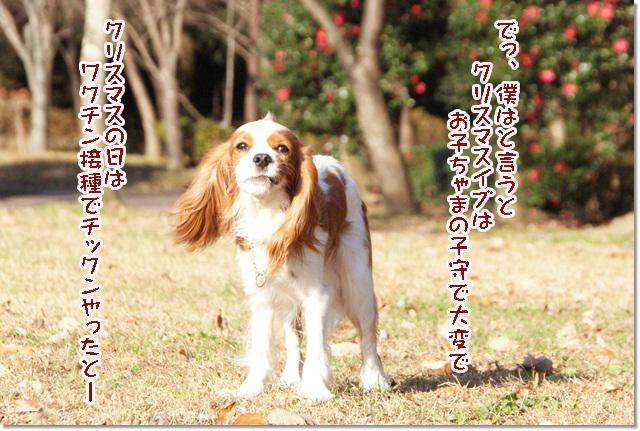 20121219_035.jpg