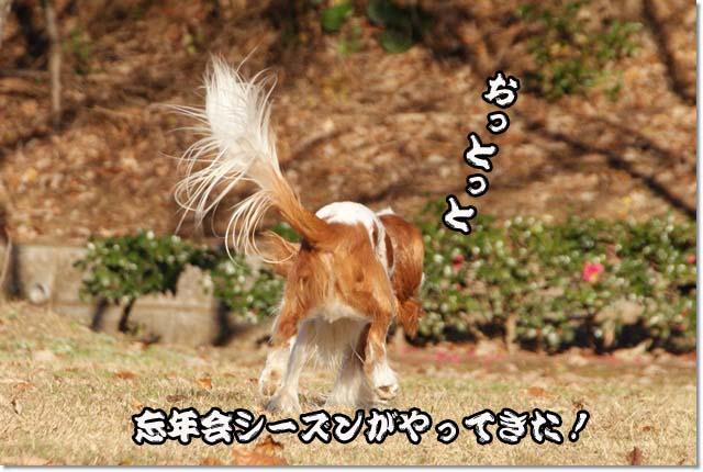 20121219_096.jpg