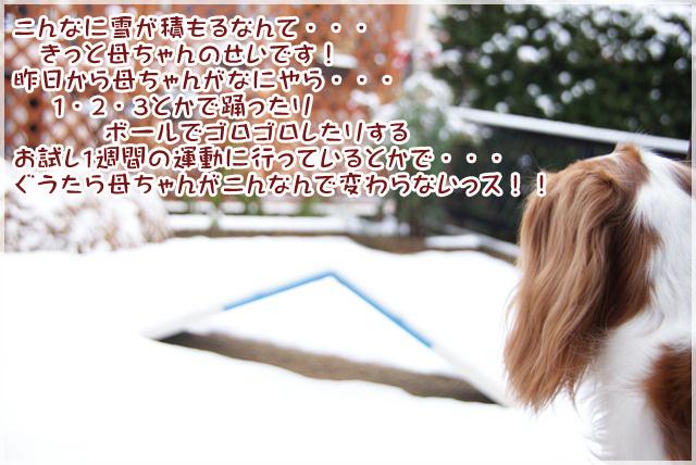 20130118_013.jpg
