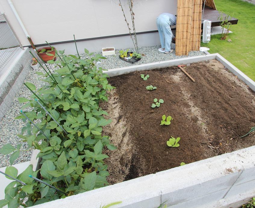 9-10 菜園植え込み