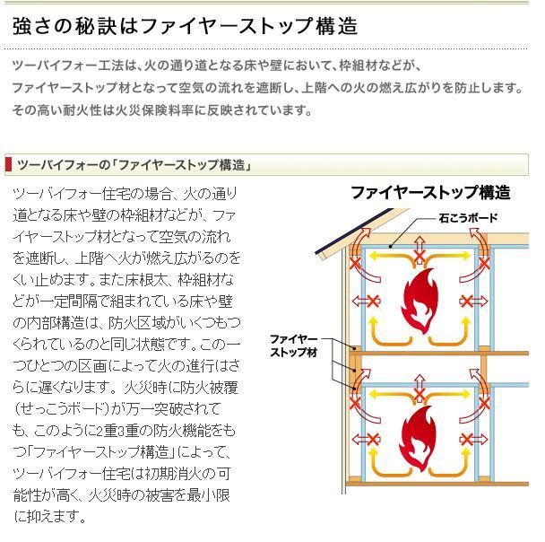 耐火性03