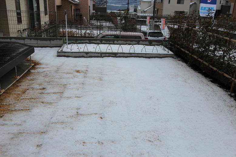 けやき坂雪02