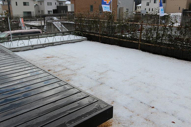 けやき坂雪03