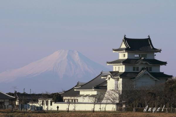 関宿城(201301065575)