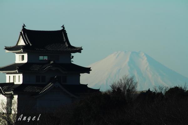 関宿城(201301065605)①