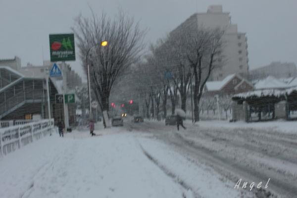 新松戸(201301140010)